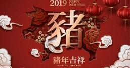2019南方公园春节放假通知